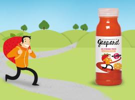 création site web gaspard