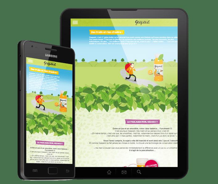 site web responsive gaspard